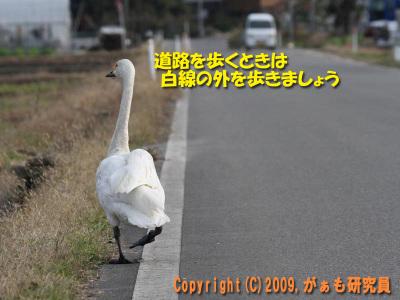 Hyouko091122b__0015_4263a