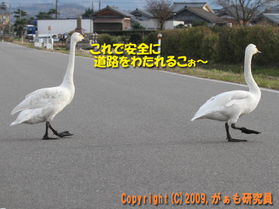 Hyouko091122b__0018_4253a