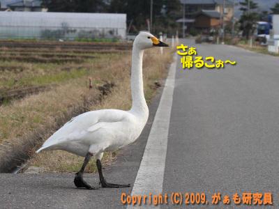 Hyouko091122b__0019_4245a